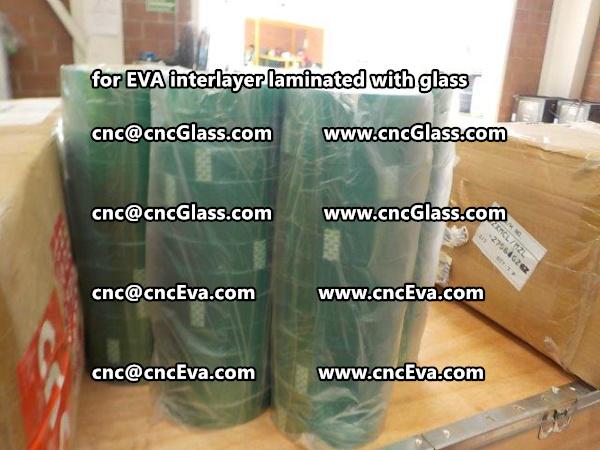lammy lami green tape PET TAPE (3)